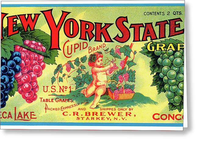 Vintage Concord Grape Packing Crate Label C. 1920 Greeting Card by Daniel Hagerman
