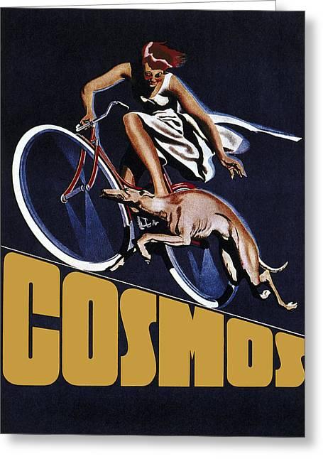 Vintage Cosmos Greyhound Bicycle Greeting Card by Daniel Hagerman