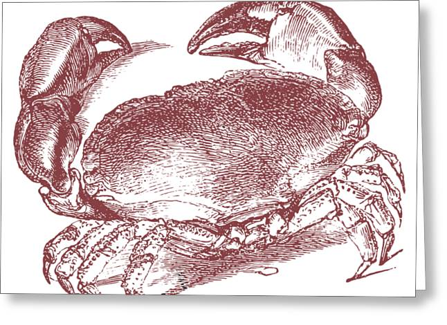 Vintage Crab Tee Greeting Card by Edward Fielding