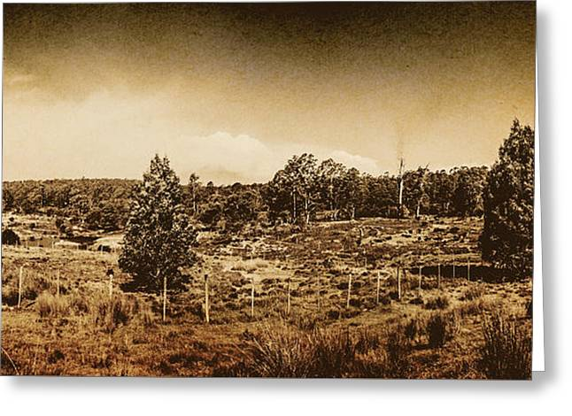 Vintage Cradle Mountain Panorama Greeting Card by Jorgo Photography - Wall Art Gallery