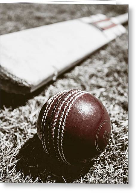 Vintage Cricket Greeting Card by Jorgo Photography - Wall Art Gallery