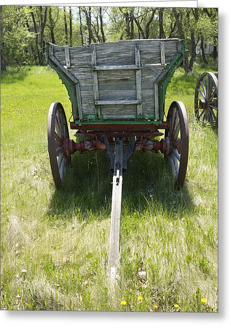 Flower Design Greeting Cards - Vintage Farm Wagon on Grass with Wild Flowers Greeting Card by Donald  Erickson