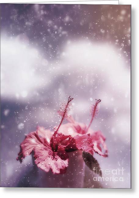 Vintage Flower In The Summer Rain Greeting Card