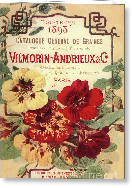 Vintage Flower Seed Cover Paris Rare Greeting Card