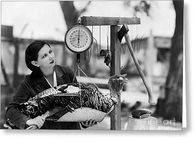 Vintage Holiday Card   Woman Weighing A Turkey Ahead Of The Holidays Greeting Card by American School