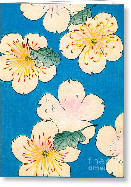 Vintage Japanese Illustration Of Dogwood Blossoms Greeting Card by Japanese School