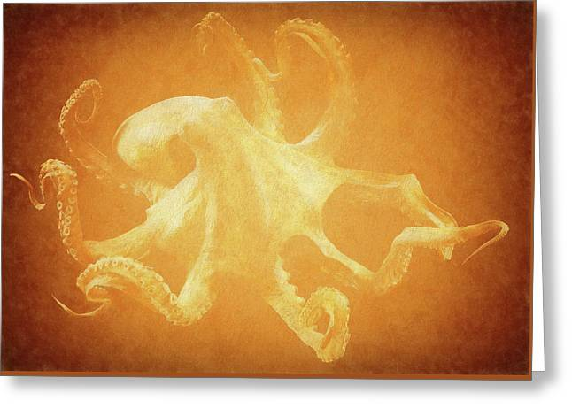 Vintage Octopus Greeting Card