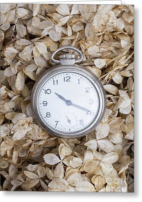 Greeting Card featuring the photograph Vintage Pocket Watch Over Dried Flowers by Edward Fielding