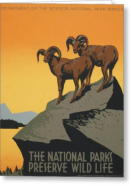 Vintage Poster - National Parks Greeting Card by Vintage Images