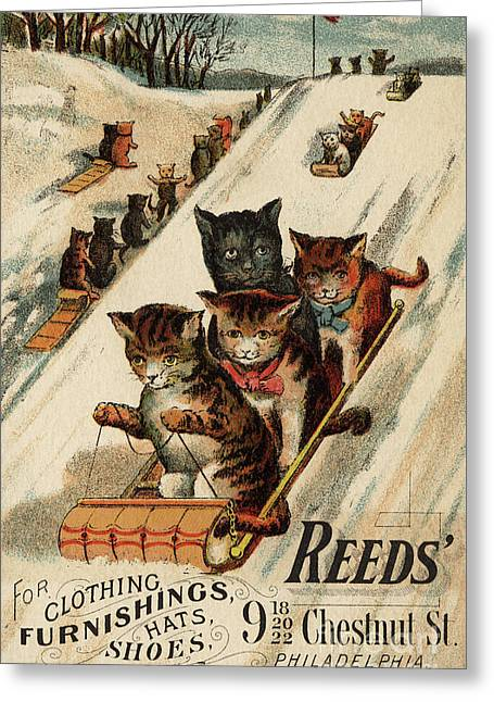 Vintage Poster With Cats Greeting Card