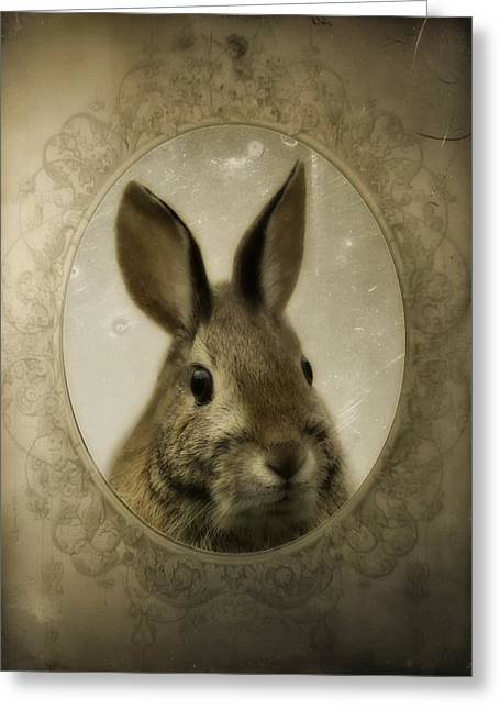 Vintage Rabbit Portrait Greeting Card by Gothicrow Images