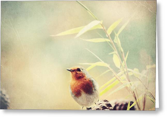 Vintage Robin 2 Greeting Card by Heike Hultsch