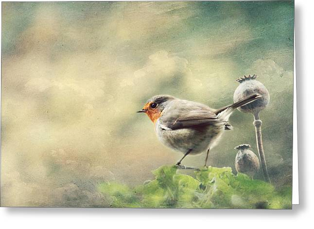 Vintage Robin Greeting Card by Heike Hultsch