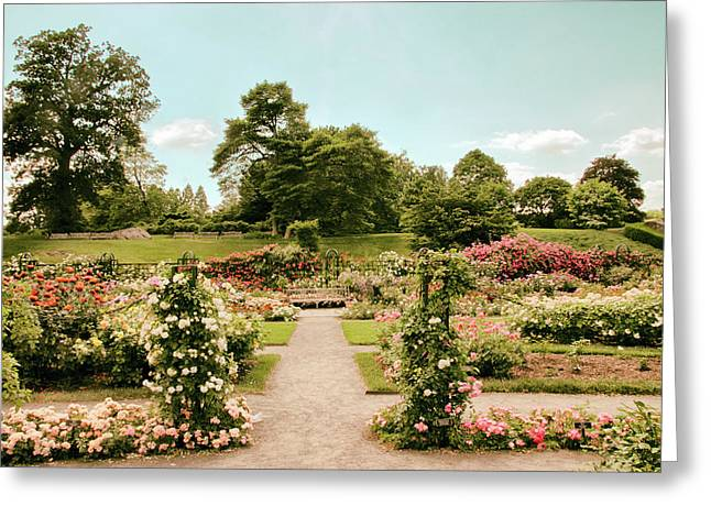 Vintage Rose Garden Greeting Card by Jessica Jenney