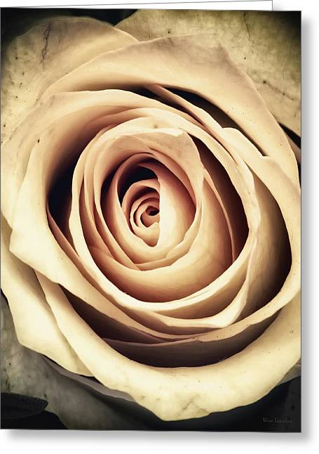 Vintage Rose Greeting Card by Wim Lanclus