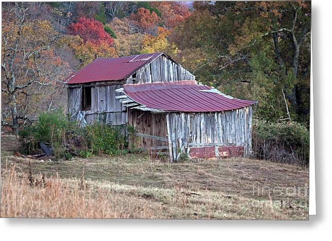 Vintage Rustic Weathered Hillside Barn Greeting Card by John Stephens