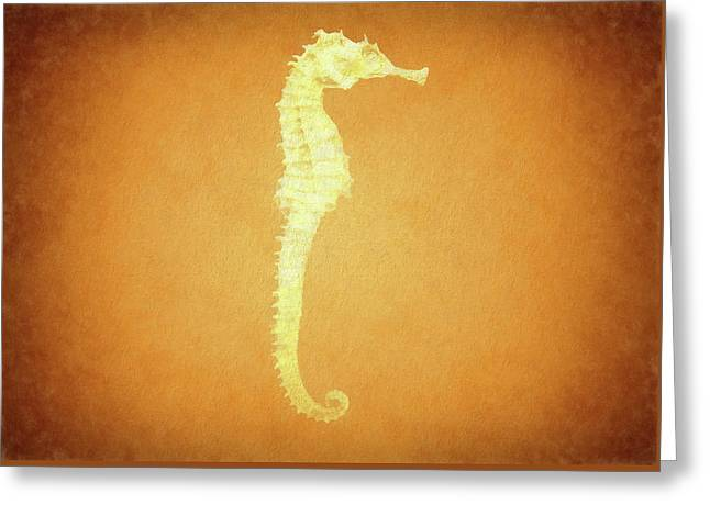 Vintage Seahorse Greeting Card by Dan Sproul