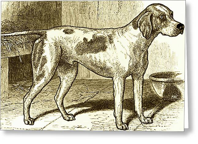 Vintage Sepia German Shorthaired Pointer Greeting Card