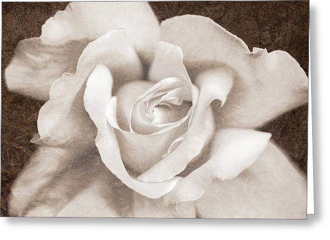 Greeting Card featuring the photograph Vintage Sepia Rose Flower by Jennie Marie Schell