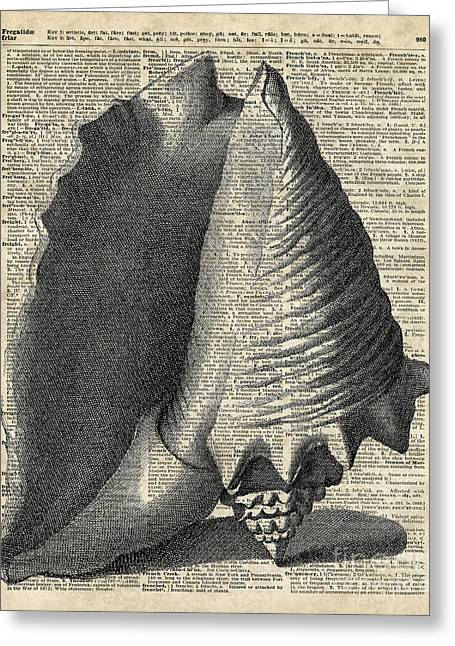 Vintage Shell Over Dictionary Book Page Greeting Card
