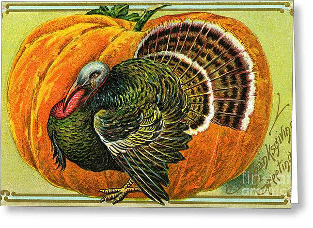Vintage Thanksgiving Card Greeting Card by American School