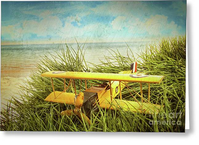 Cockpit Greeting Cards - Vintage toy plane in tall grass at the beach Greeting Card by Sandra Cunningham