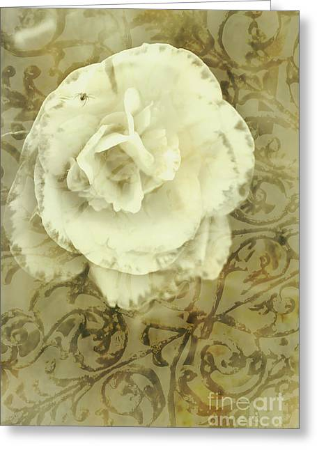 Vintage White Flower Art Greeting Card