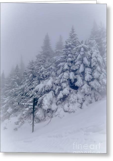 Vintage Winter Scene 1 Greeting Card by James Aiken