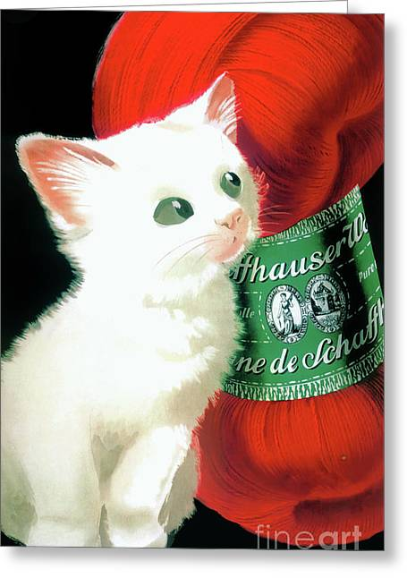 Vintage Wool With White Kitty Poster Greeting Card