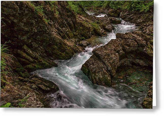 Greeting Card featuring the photograph Vintgar Gorge Rapids - Slovenia by Stuart Litoff