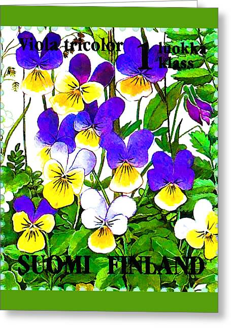 Viola Tricolor Greeting Card