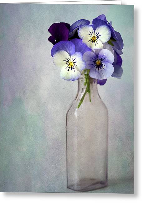 Violas In A Vase Greeting Card by Cindy Carter Photography