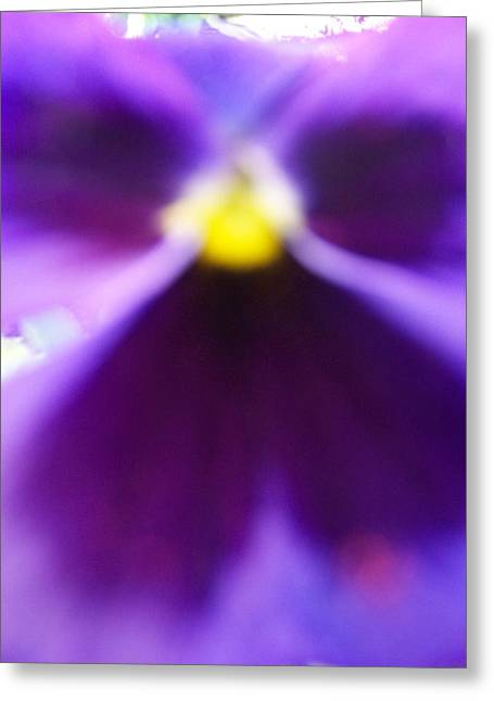 Violet Aura Greeting Card by Vijay Sharon Govender