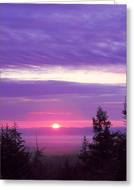 Violet Sunset IIi Greeting Card