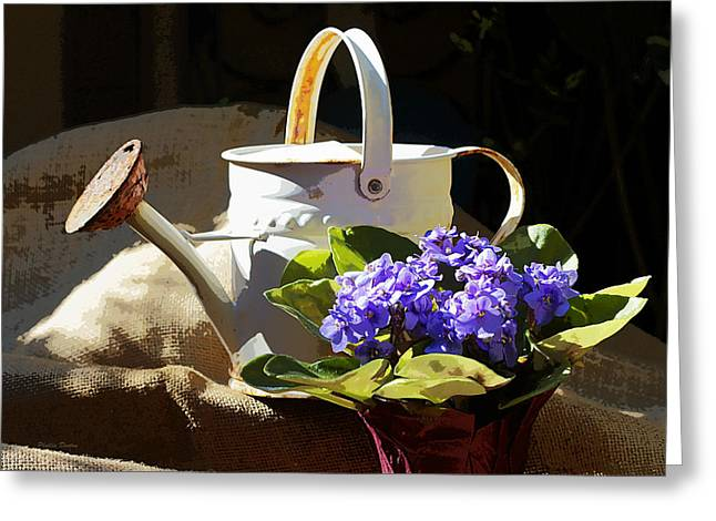 Violets For The Garden Greeting Card by Phyllis Denton