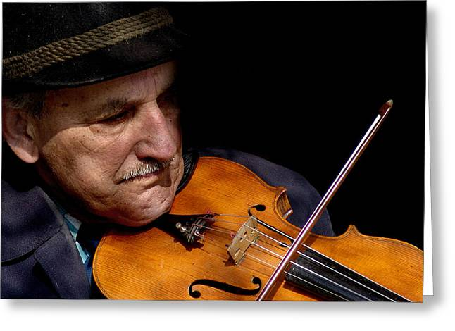 Violin Player Greeting Card by Todd Fox