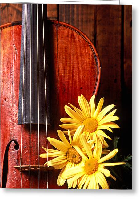 Violin Greeting Cards - Violin with daises  Greeting Card by Garry Gay