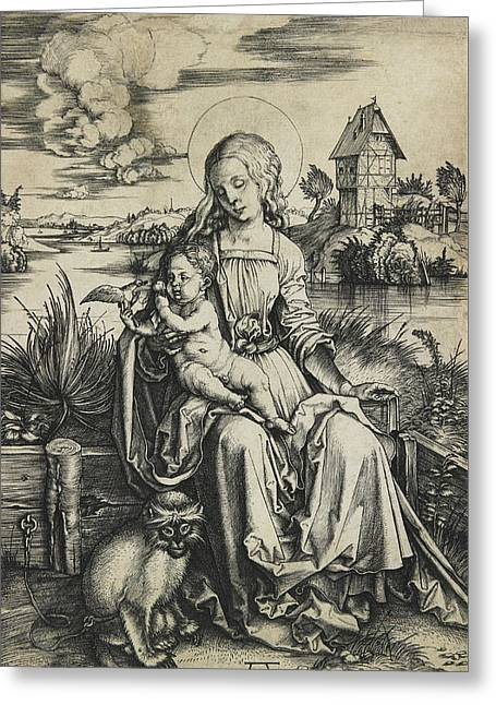 Virgin And Child With The Monkey Greeting Card by Albrecht Durer