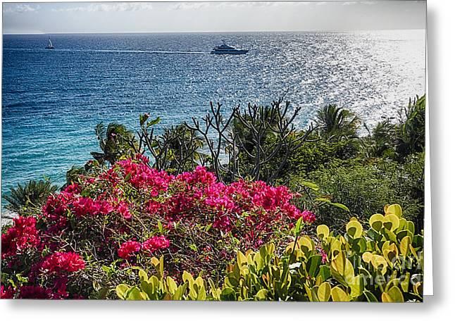 Virgin Islands Coastal Vista Greeting Card by George Oze