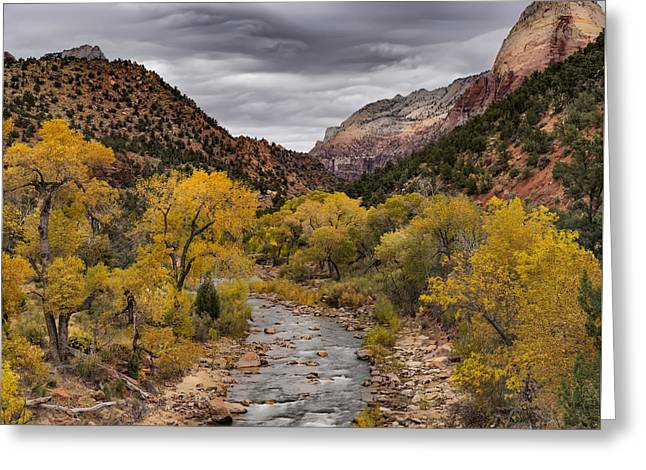 Virgin River Fall Greeting Card by Leland D Howard