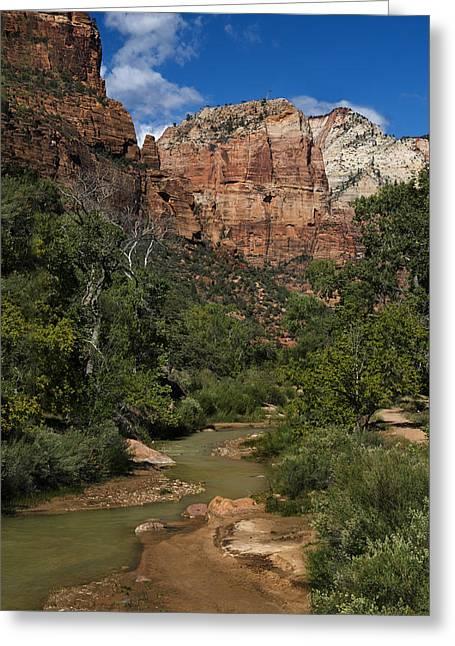 Virgin River View - Zion - Utah Greeting Card by Nikolyn McDonald