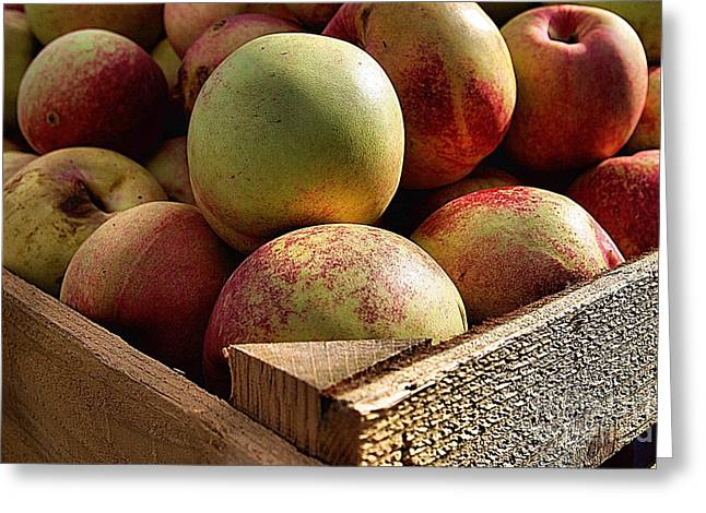 Virginia Apples  Greeting Card by John S