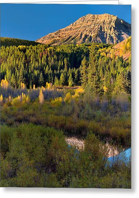 Virginia Peak Greeting Card by Leland D Howard
