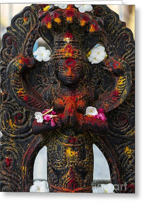 Vishnu Greeting Card by Tim Gainey