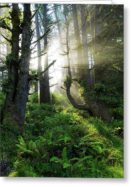 Greeting Card featuring the photograph Vision by Chad Dutson