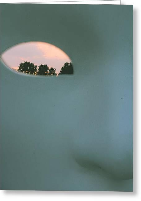 Visions At Sunset Greeting Card