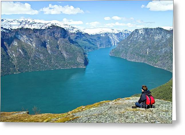 Visitor At Aurlandsfjord Greeting Card