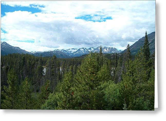 Vistas Along The Alcan Greeting Card by Janet  Hall