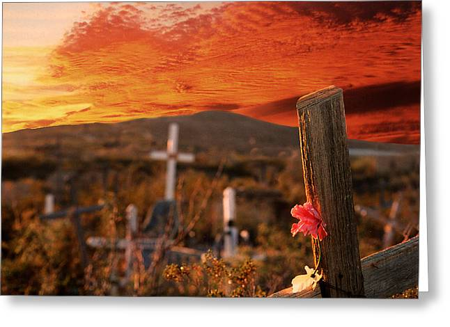 Viva Terlingua Greeting Card by Rick Staudt