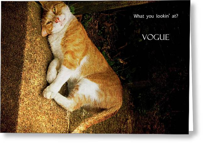 Vogue Greeting Card by Michael Taggart II